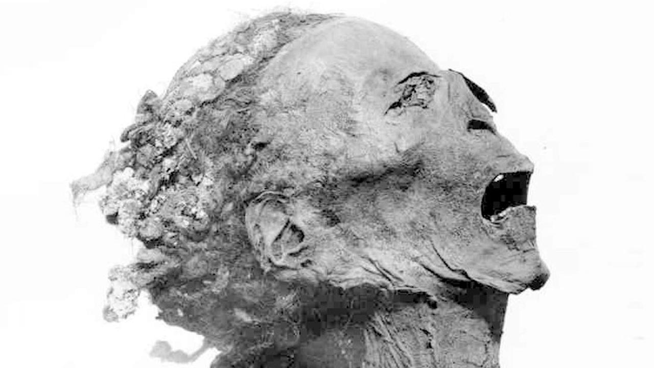 Преступление, наказание, расследование: новые подробности убийства фараона Рамсеса III