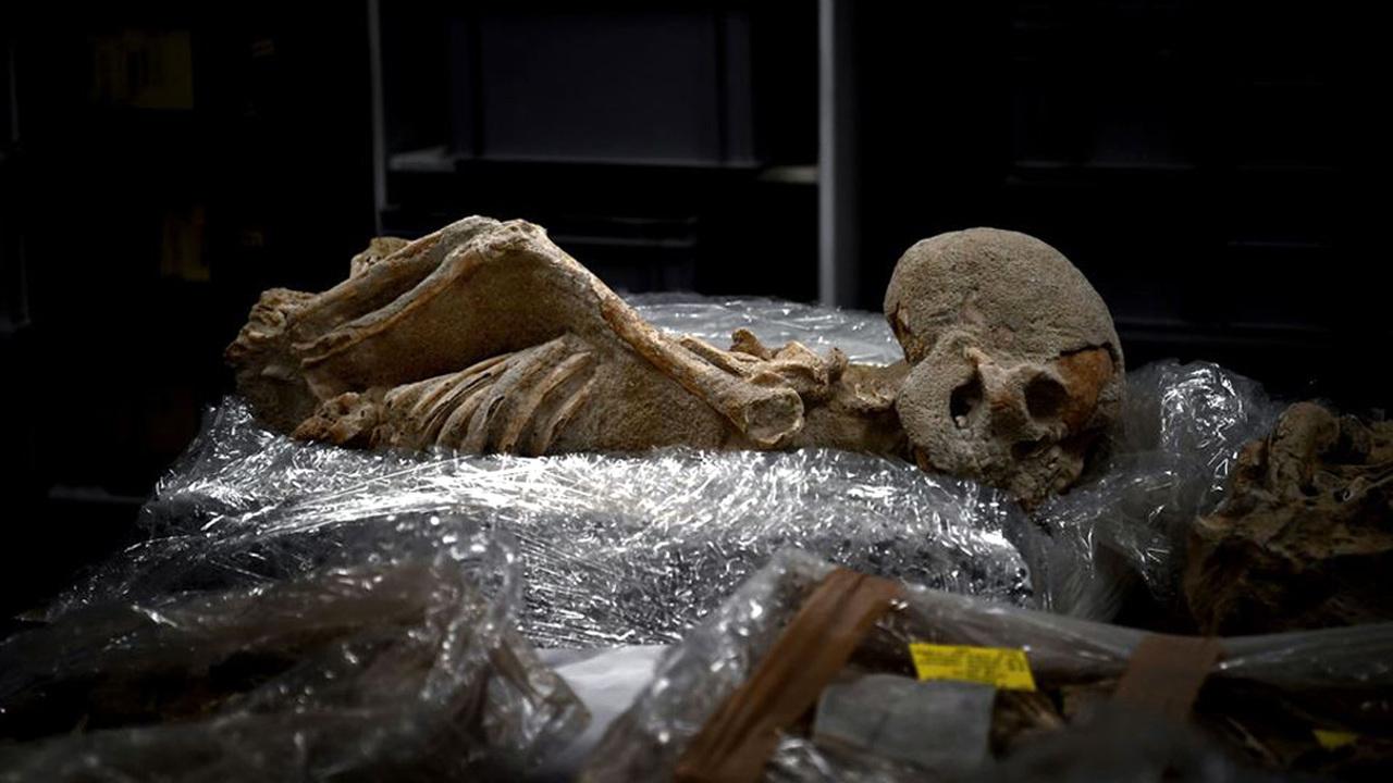 Место преступления – Афины: древние кости из Фалирона изучают археокриминалисты