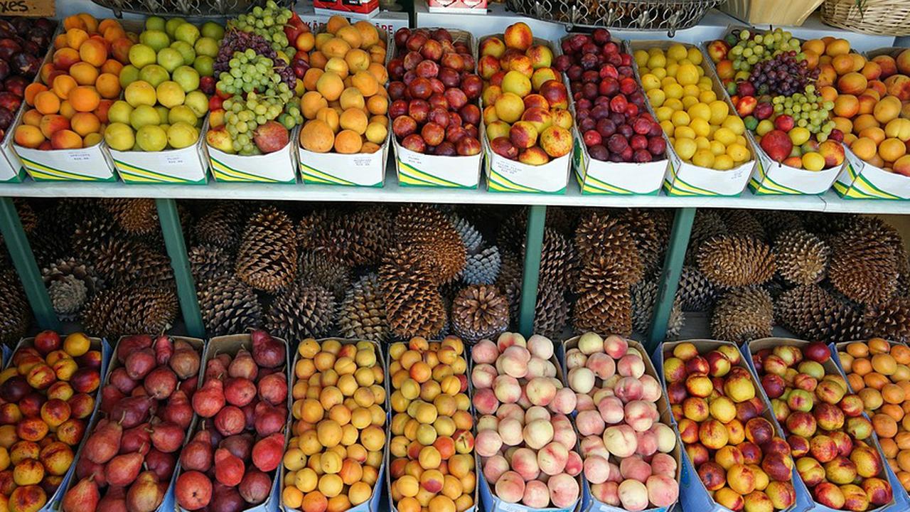 Свежие фрукты снижают риск развития сахарного диабета