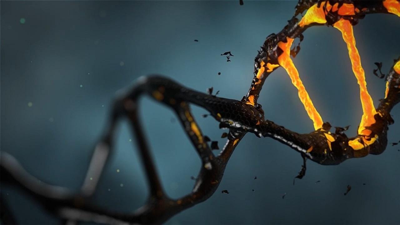 CRISPR в деле: процесс редактирования гена впервые засняли на видео
