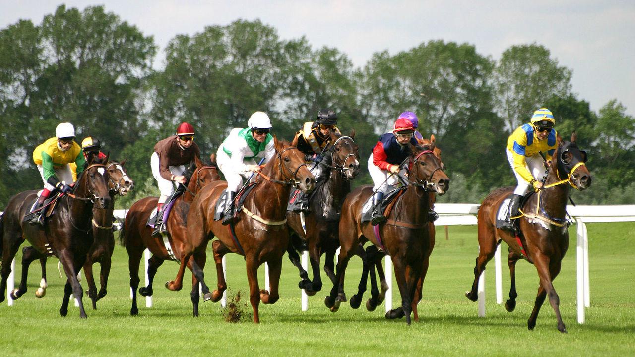 Лошади потеряли пальцы, чтобы стать быстрее