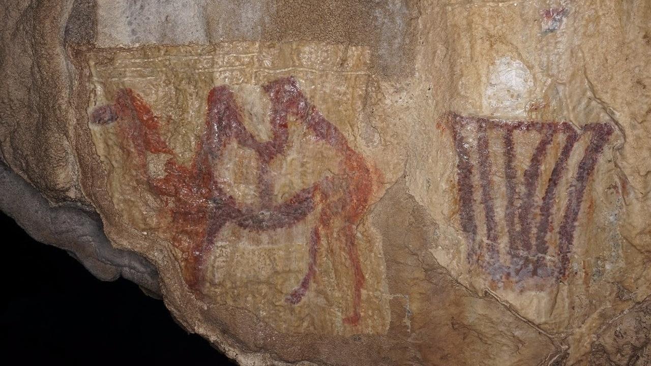 В уральской пещере найдено древнейшее изображение двугорбого верблюда