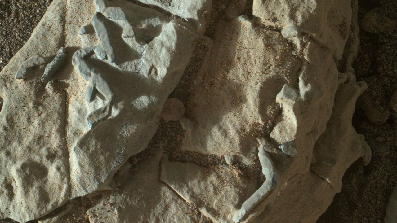 """""""Кьюриосити"""" нашёл на Марсе нечто, похожее на окаменелые норы червей"""
