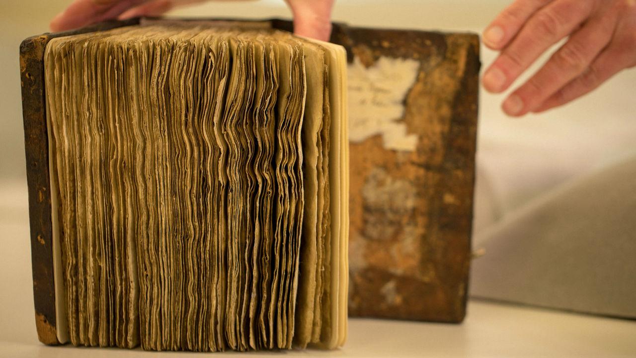 Утраченный текст Галена прочитали впервые за тысячу лет