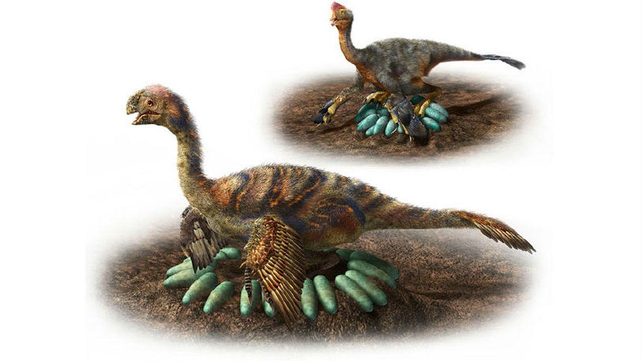 Как крупные динозавры высиживали яйца, не повреждая их