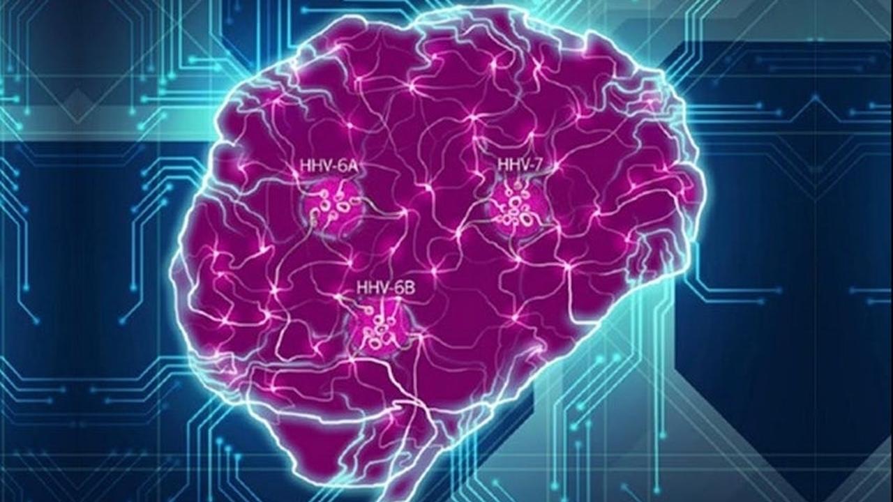 На новый лад: вирус герпеса связан с развитием болезни Альцгеймера