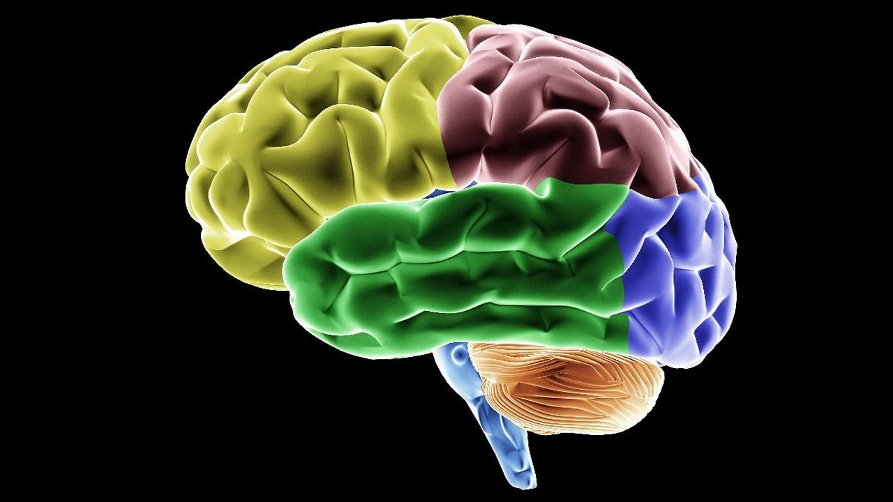 Инсульт увеличивает риск развития деменции в два раза