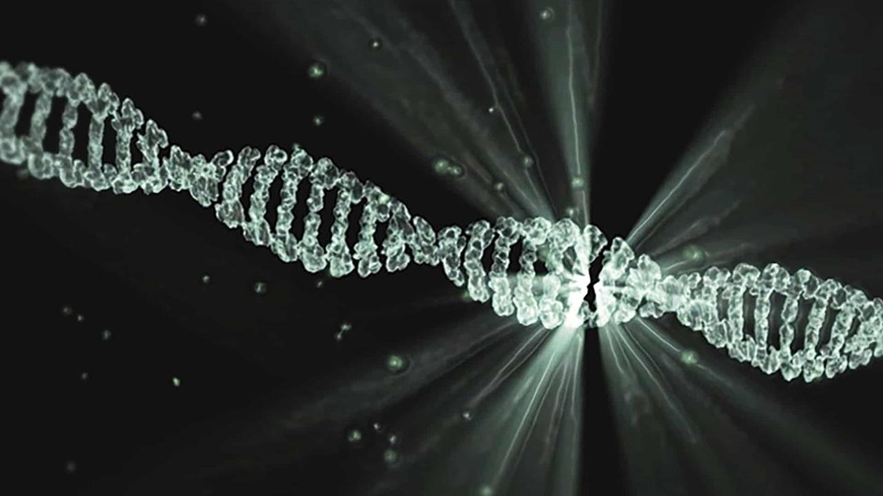 Редактирование генов в организме человека: безопасность доказана, эффективность пока под вопросом