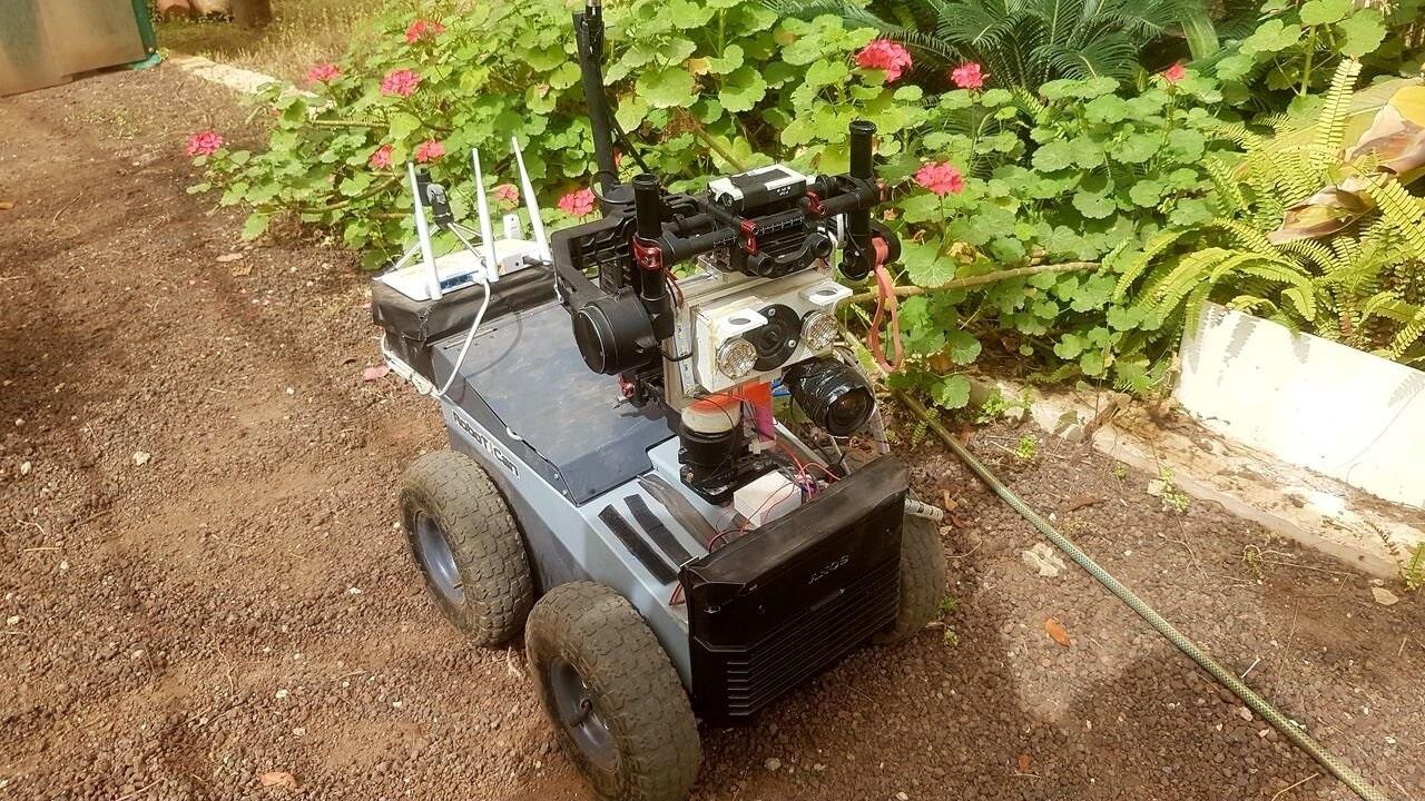 Первый в своём роде робот ориентируется в пространстве, как летучая мышь