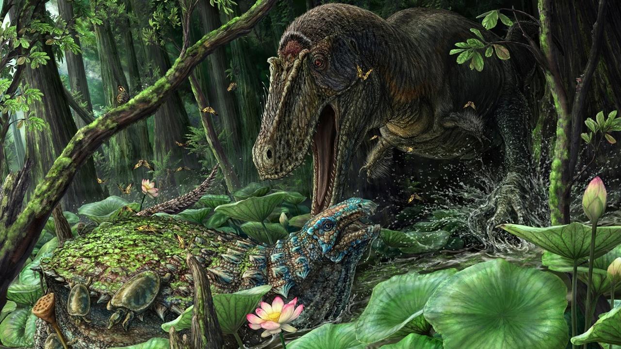 Палеонтологи обнаружили редчайшие останки древнего родственника тирекса