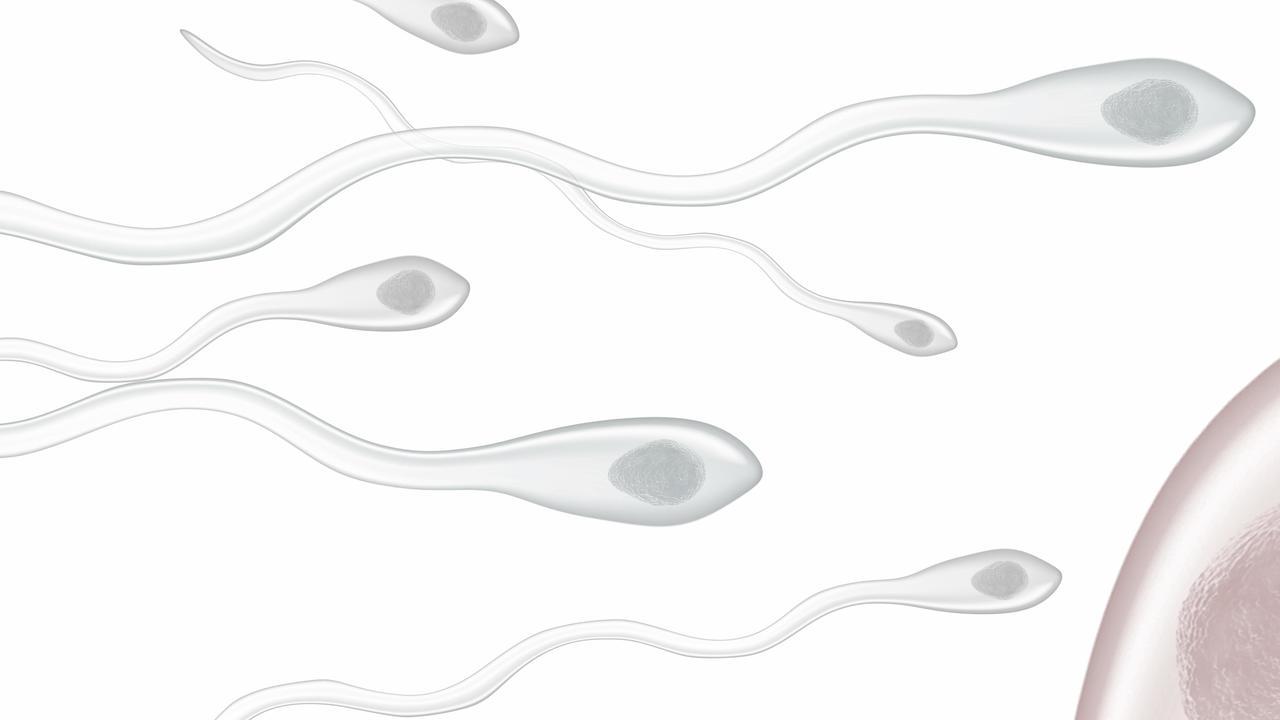 Коктейли вдохновили китайских учёных на создание новой формы мужской контрацепции