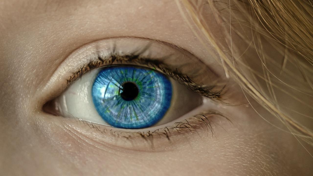 Первый клеточный атлас сетчатки примата поможет в борьбе со слепотой