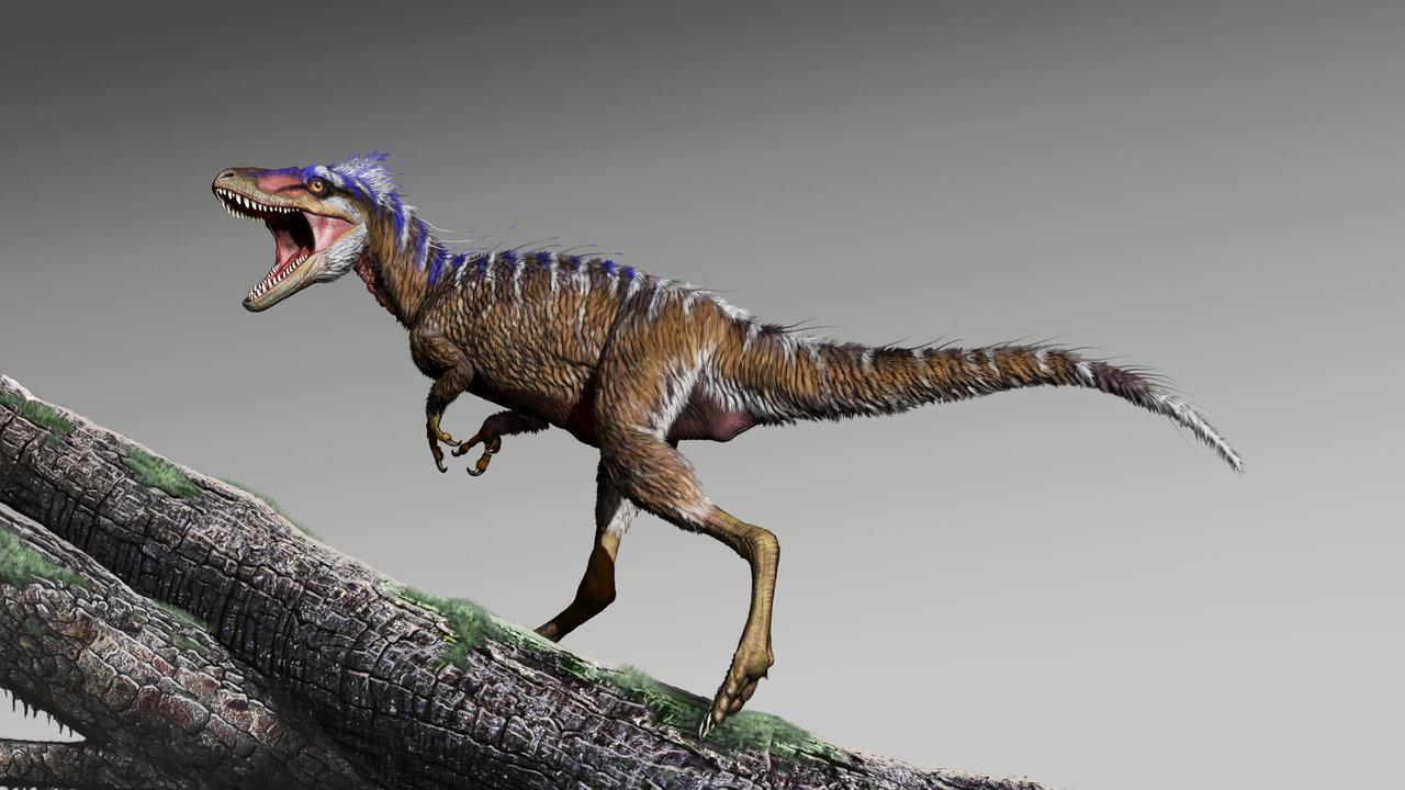 Предвестник гибели: найдены останки крошечного предка грозного тирекса