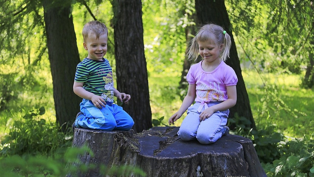Плюсы зелёных зон: природа значительно снижает риски психических расстройств