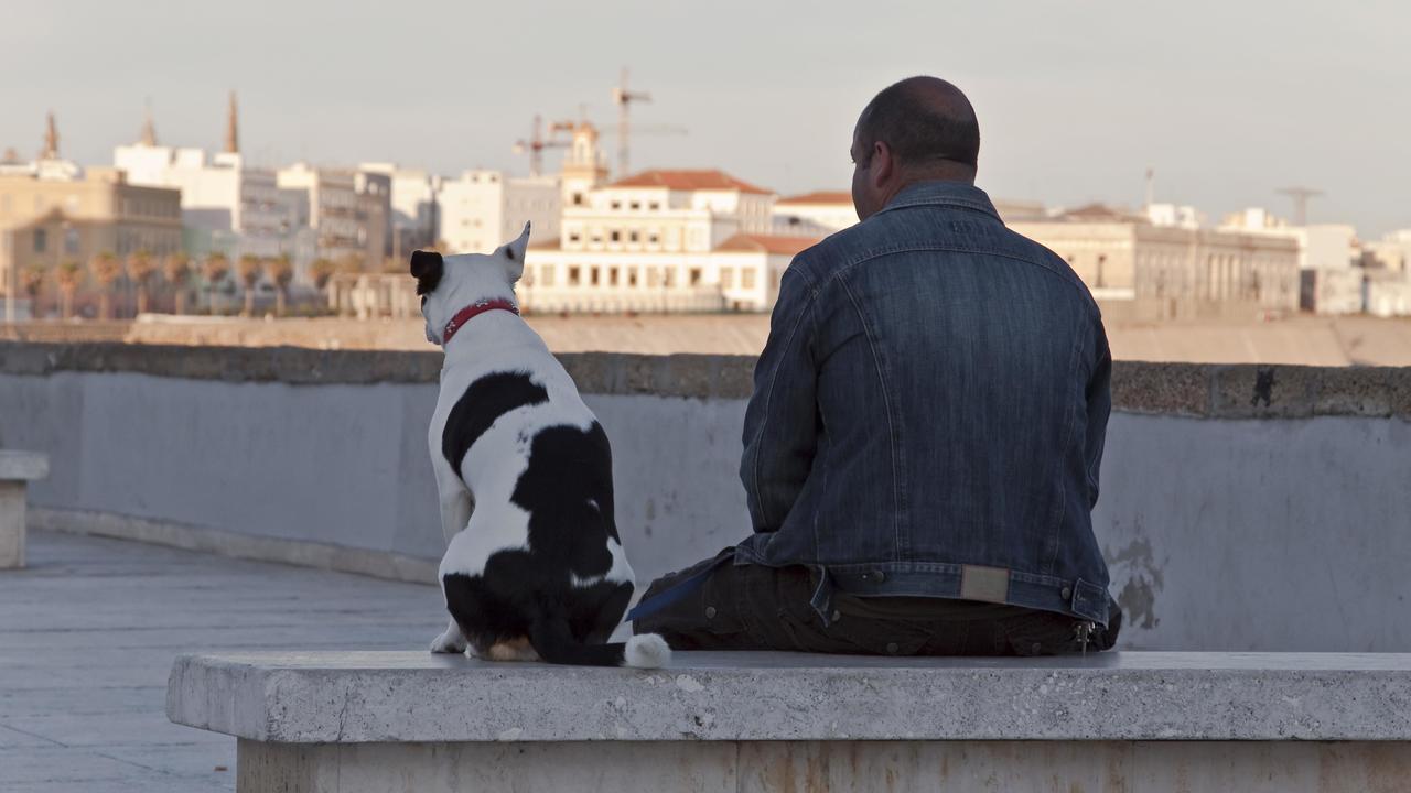 Бытовые химические загрязнители ухудшают качество спермы мужчин и собак
