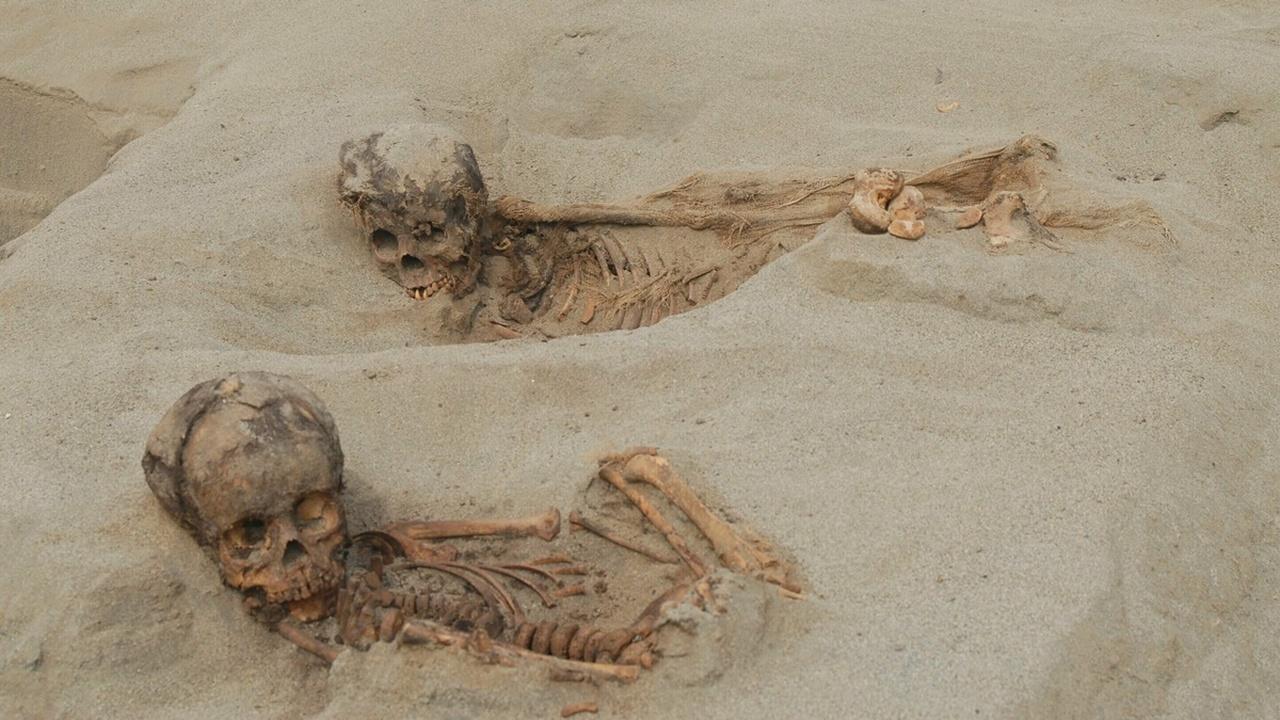 Крупнейшее жертвоприношение в Новом Свете: в Перу найдены останки сотен детей и животных с вырванным сердцем