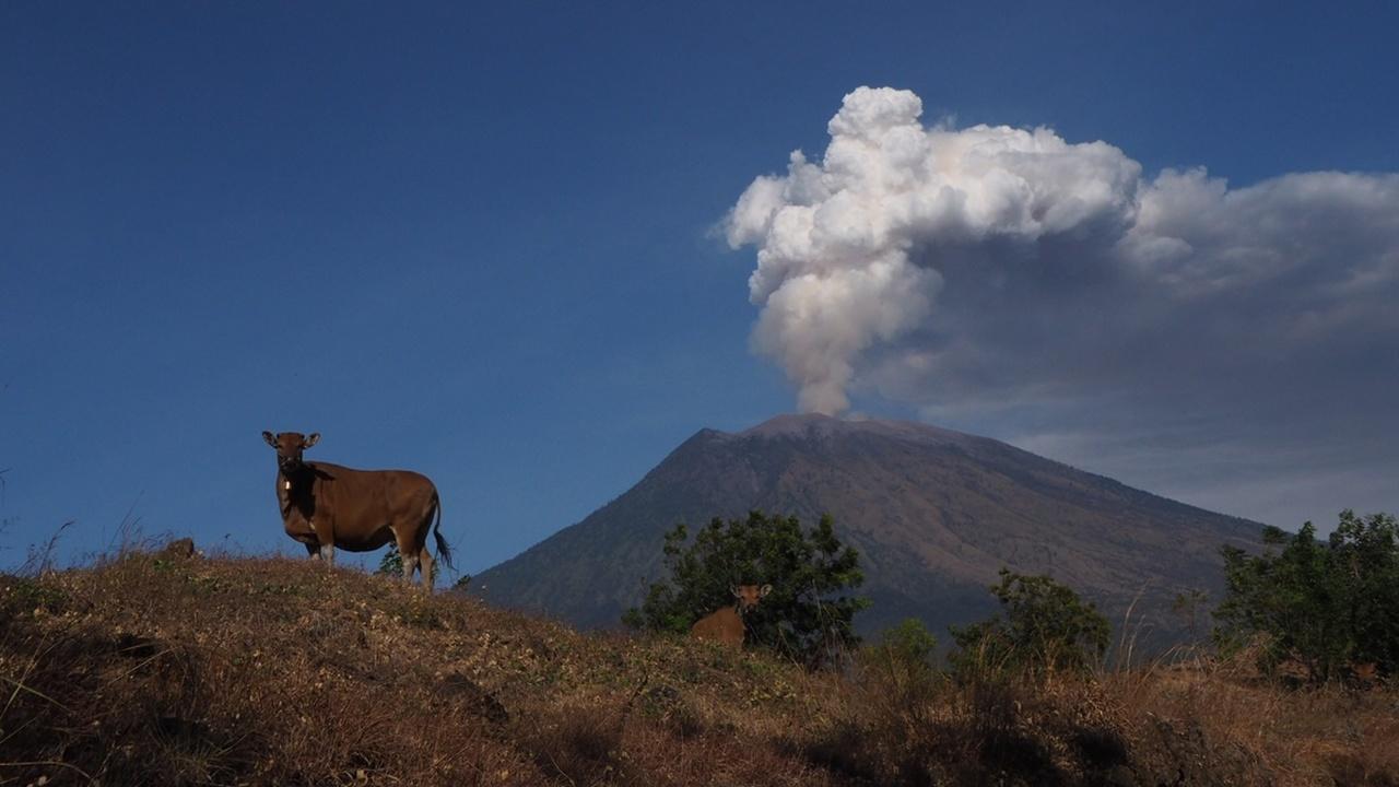 Извержения вулканов будет предсказывать искусственный интеллект