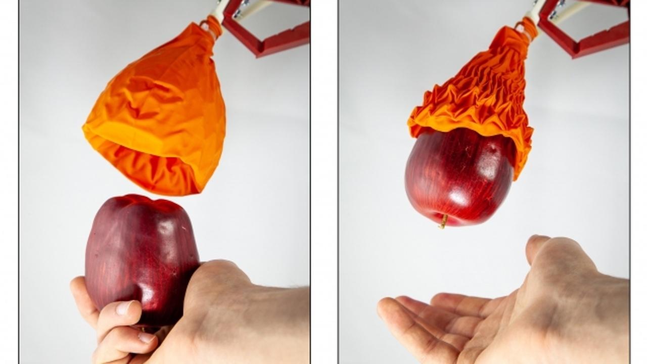 """""""Резиновый тюльпан"""" научили бережно поднимать тяжёлые предметы"""