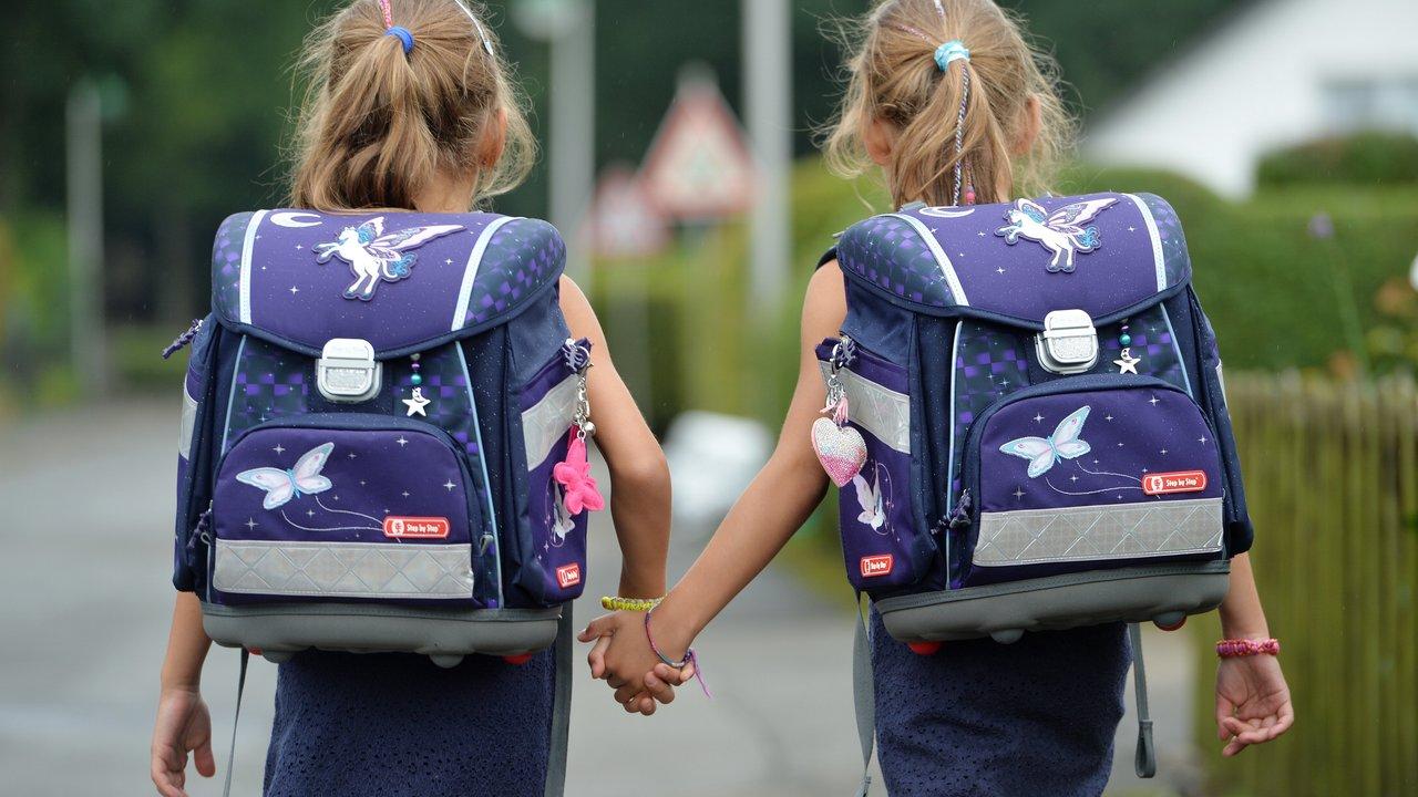 Женщины, имеющие брата-близнеца, реже заканчивают школу и выходят замуж