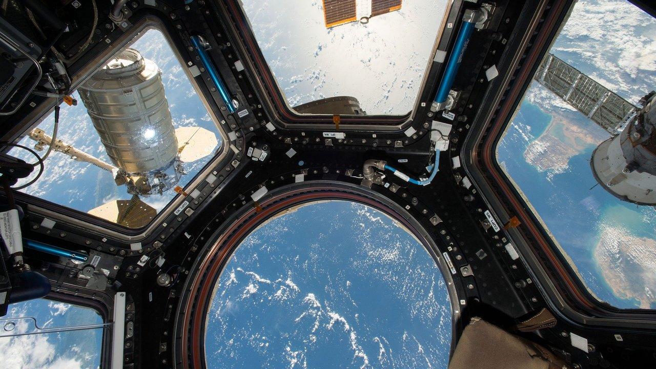 Супербактериям вход закрыт: на МКС испытали новое противомикробное покрытие