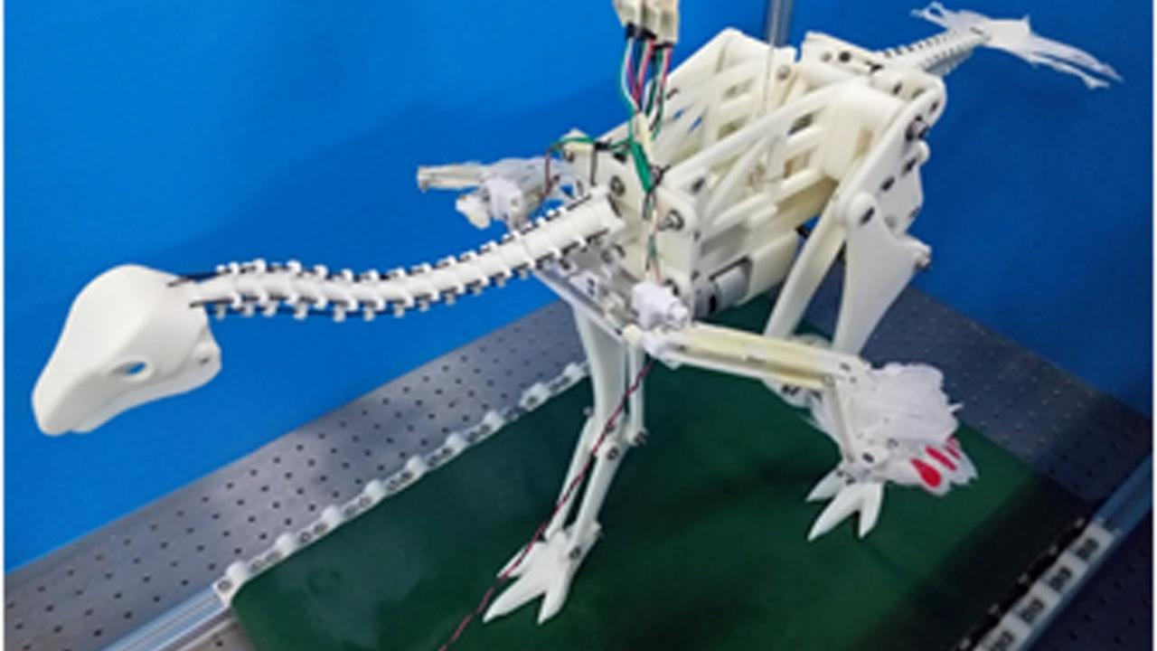Биологи выяснили, как динозавры начали махать крыльями