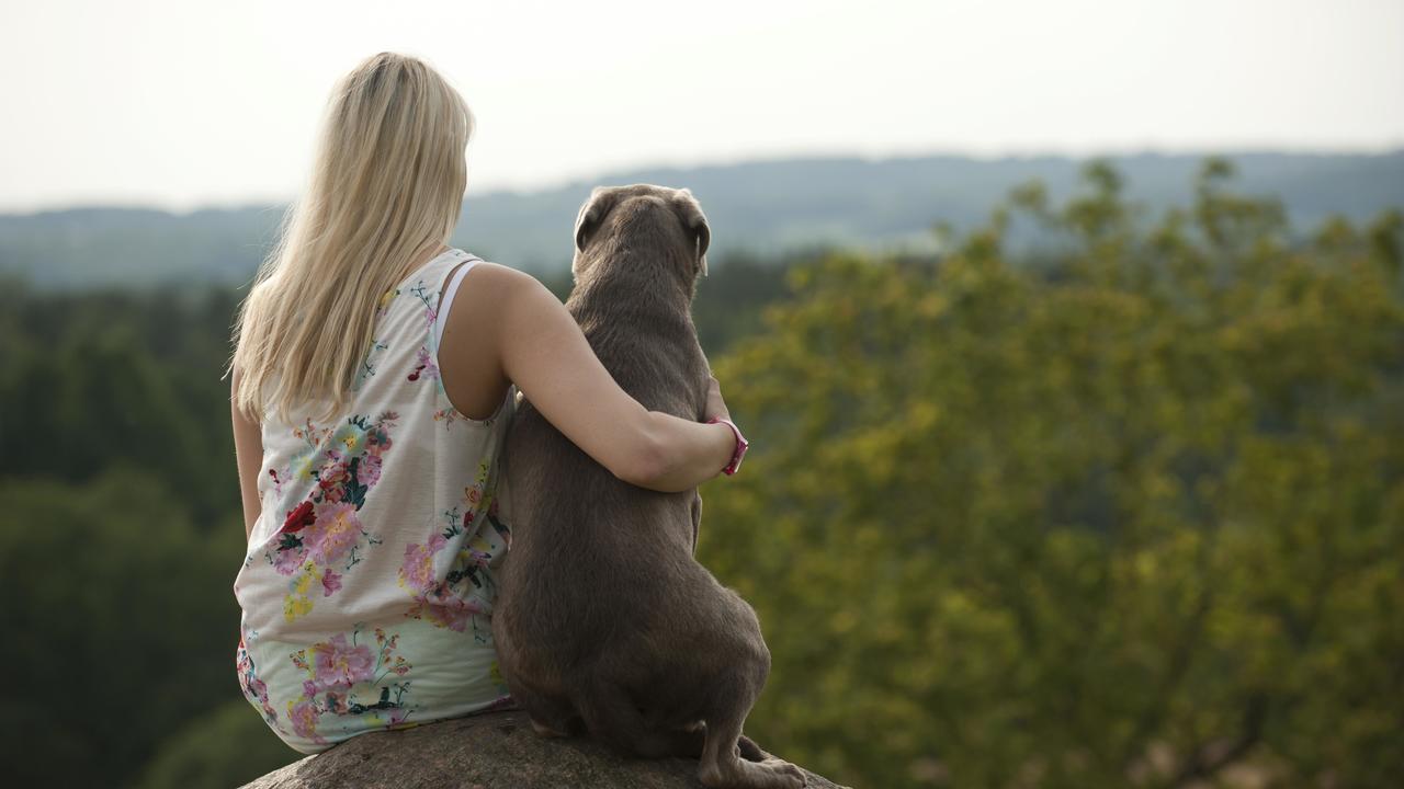 Опять генетика? Учёные выяснили, что влияет на желание завести собаку
