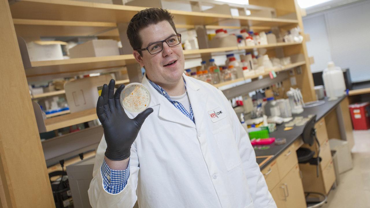 """Эксперты разрабатывают детектор """"сбежавших"""" ГМО-микробов"""
