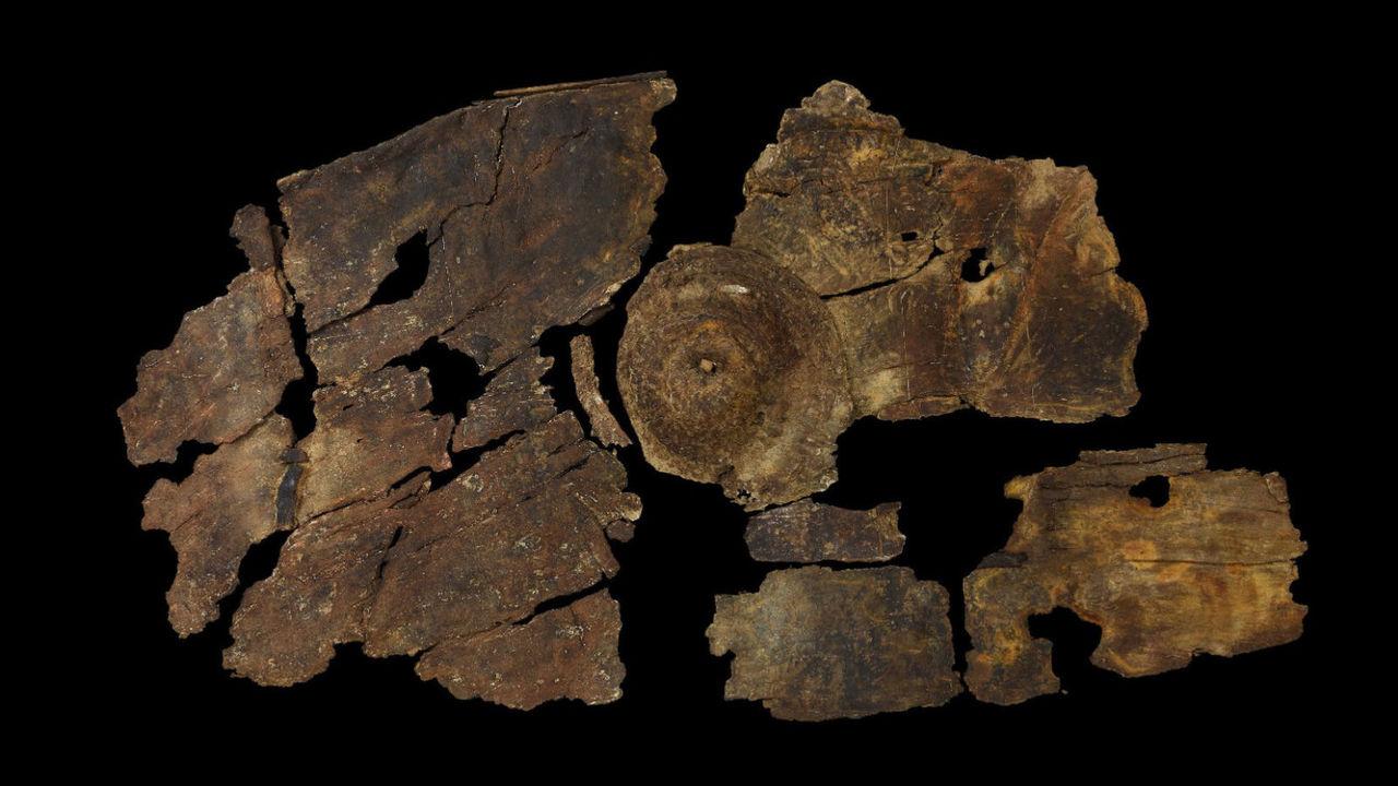 Эффективная защита: доисторический щит из коры удивил историков