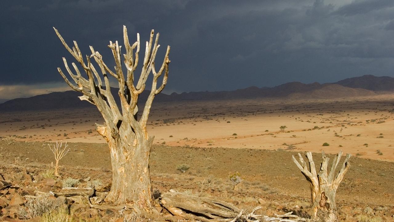 Обещание Апокалипсиса: климатические изменения могут уничтожить цивилизацию значительно быстрее, чем считается