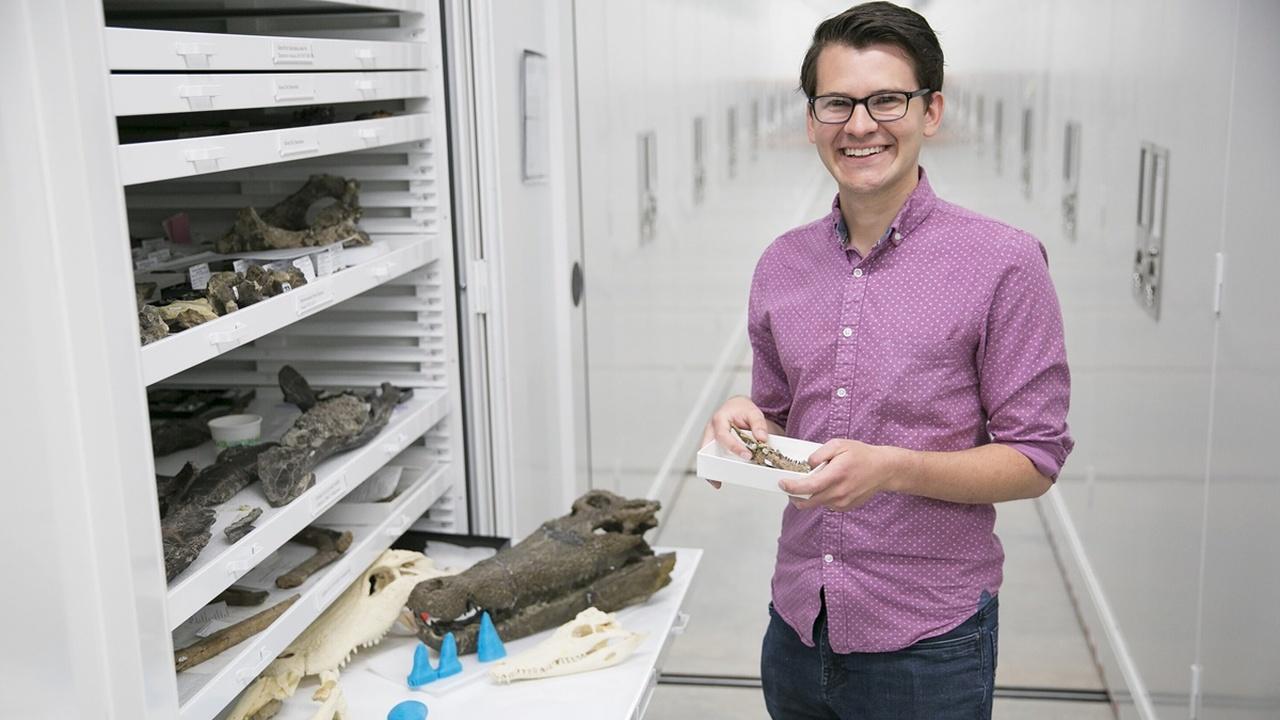 Многие древние крокодилы были вегетарианцами