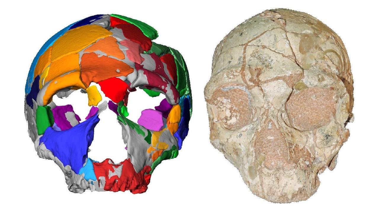 В Греции найдены древнейшие в Евразии останки Homo sapiens