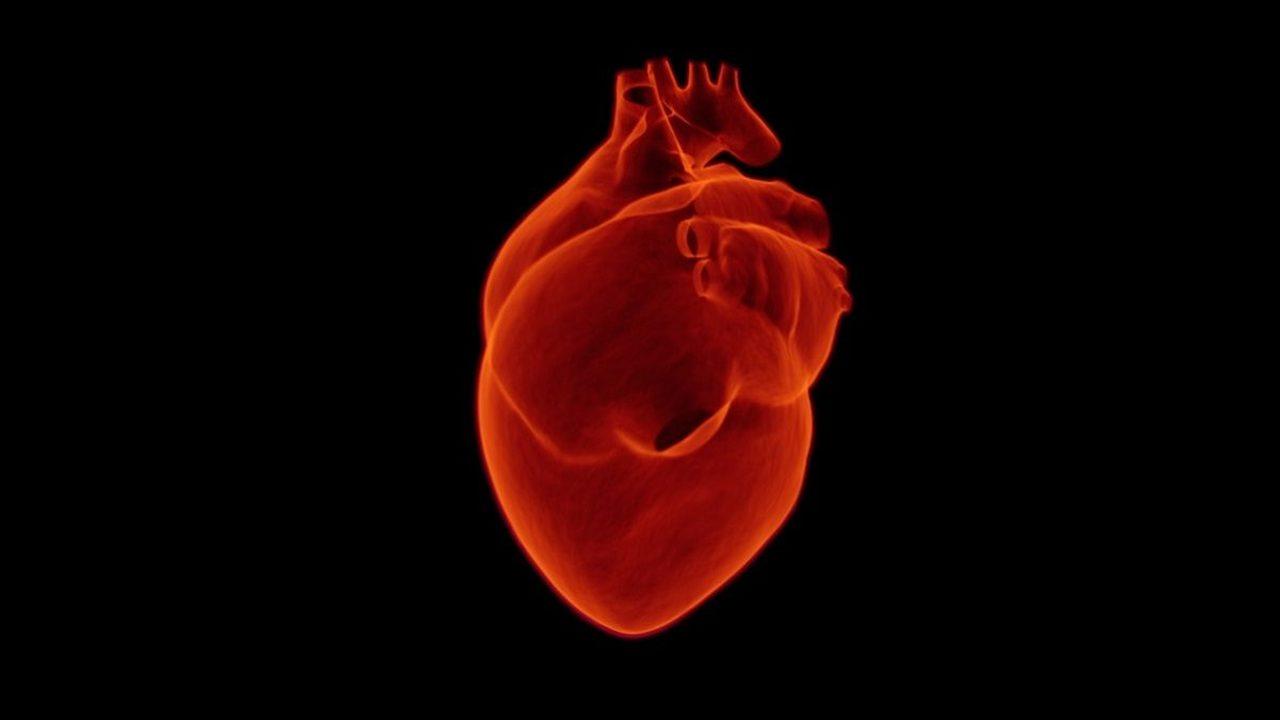 Биологи освоили 3D-печать сложных компонентов человеческого сердца