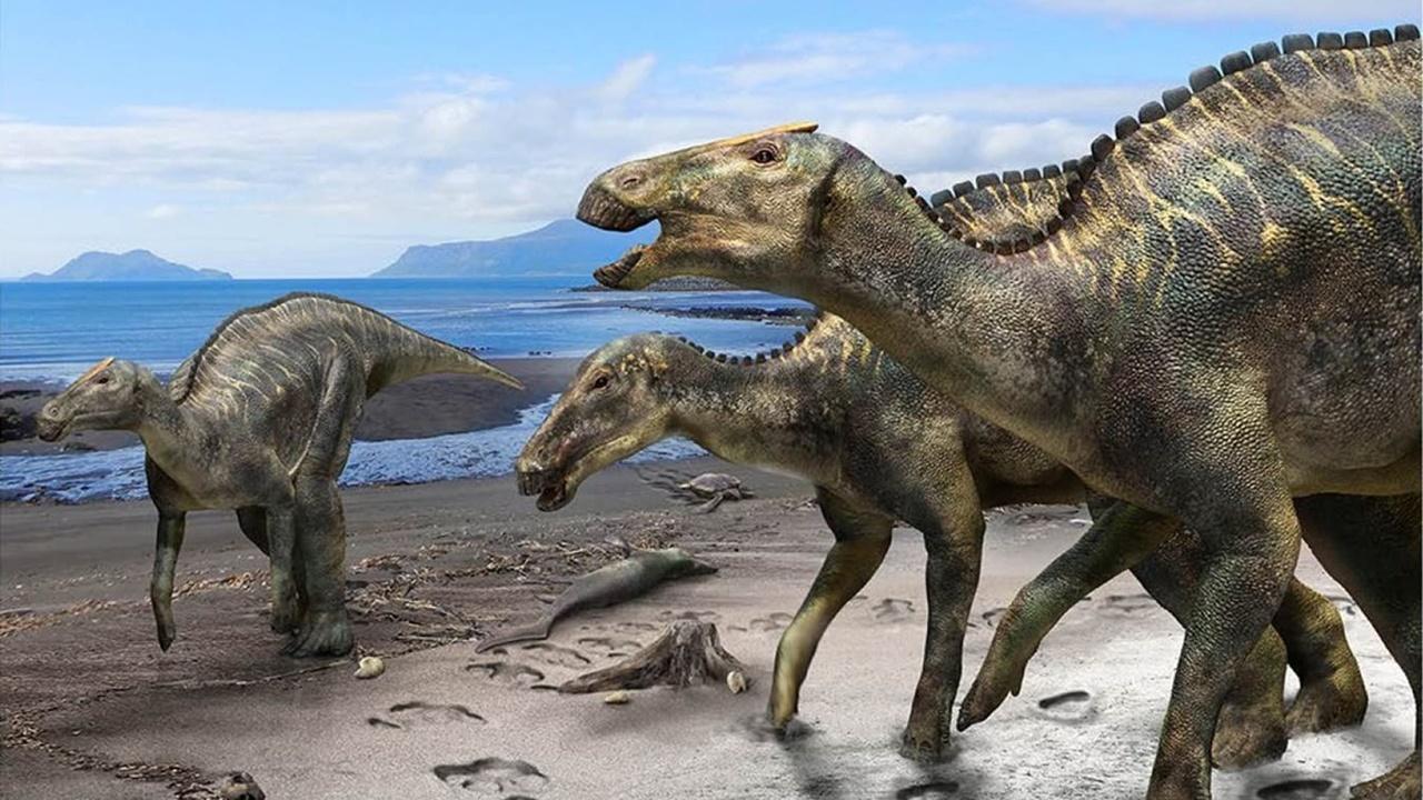 """Палеонтологи отыскали почти полный скелет """"божества японских динозавров"""""""