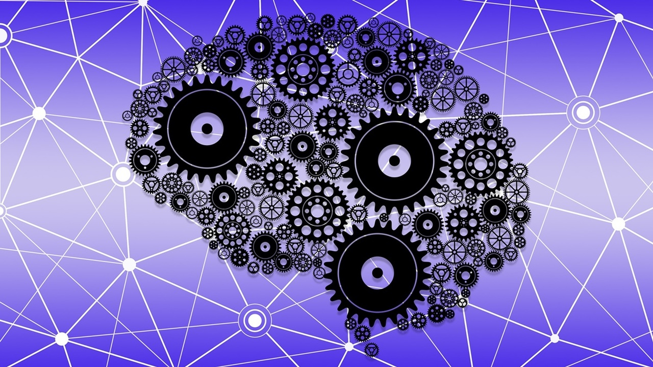 Гиперактивность нейронов сокращает жизнь