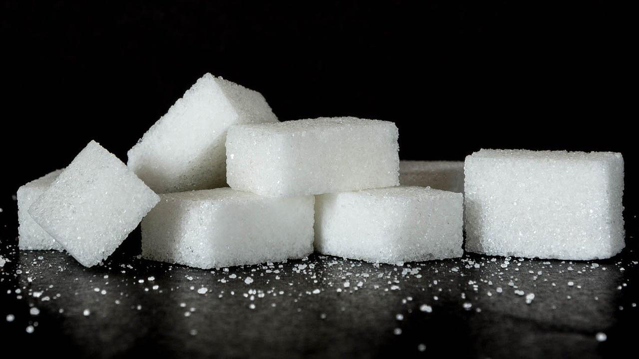 """Бактерий превратили в """"биореакторы"""" для производства низкокалорийного сахара"""
