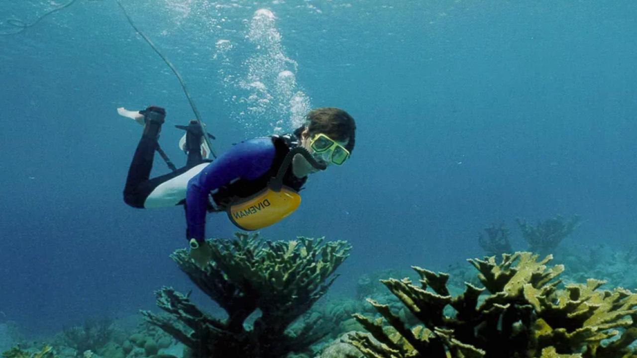 Новое устройство превращает ноги аквалангиста в насос для подачи воздуха с поверхности