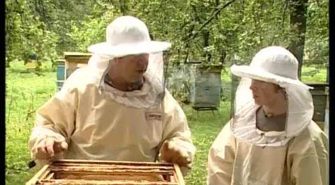 Есть такая профессия. Пчеловод