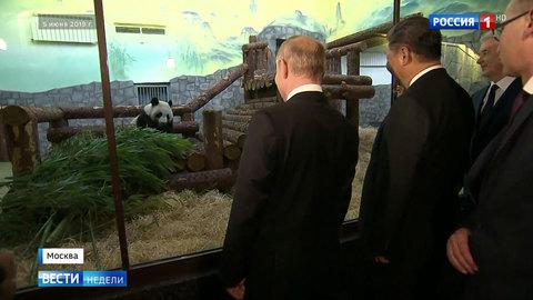 Путин принял Си Цзиньпина по-семейному