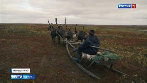 Чем Ненецкий округ готов удивить туристов