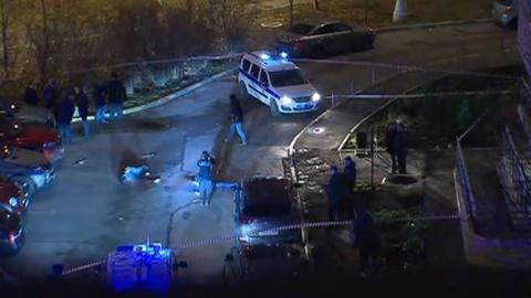 Следствие: резонансное убийство в Москве совершено группой лиц