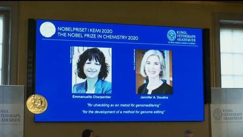 Вопрос науки. Развитие метода редактирования генома: Нобелевскую премию по химии получили ученые из США и Франции