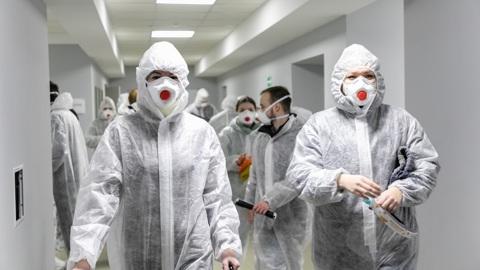 Вести-Курск. В Курске волонтеры отметили День студента добрыми делами