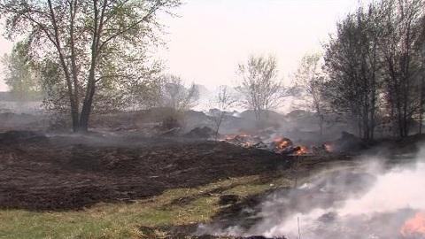 Более полутора тысяч человек тушат пожары в Тюменской области