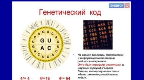 Естествознание. Лекции+Опыты. Генетика - 2 лекция