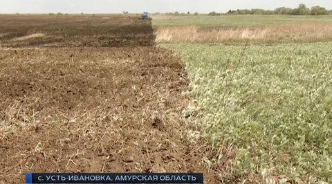 Фермеры Амурской области восстанавливают затопленное хозяйство