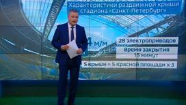 """""""Погода 24"""": в случае сильного дождя Россия и Египет сыграют под крышей"""
