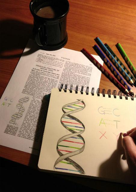 """Основания ДНК можно сравнить с буквами алфавита. Всё разнообразие жизни основывается всего на четырёх """"буквах"""""""
