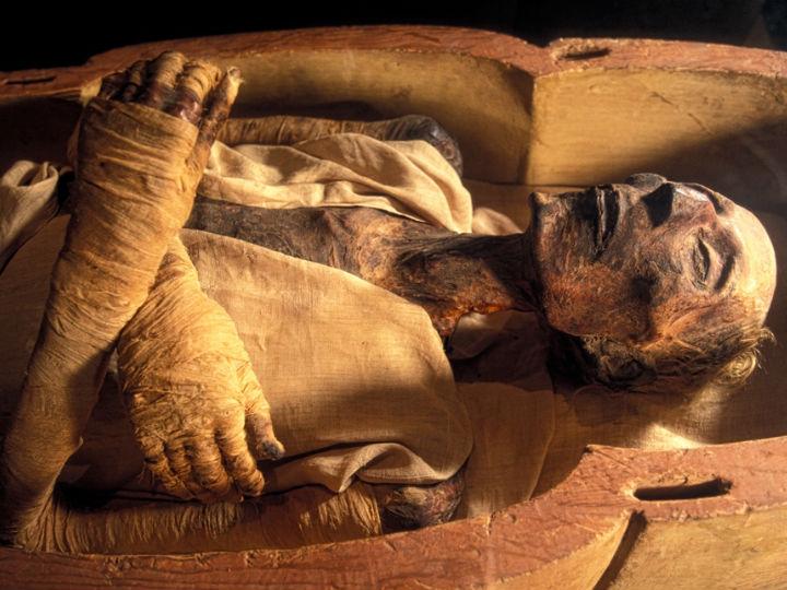 Мумифицировали чаще всего фараонов в династический период. Это мумия Рамзеса II, хранящаяся в Каирском египетском музее