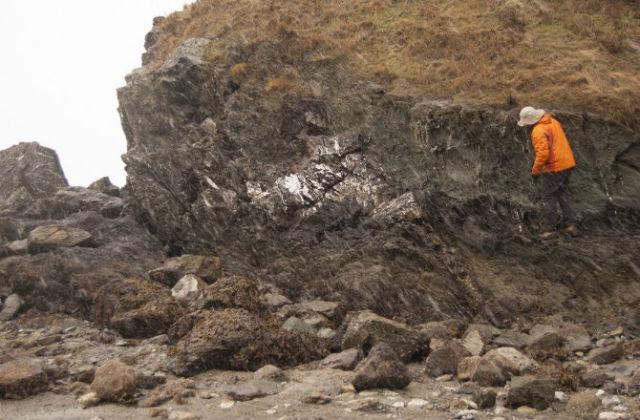Прожилки арагонита в базальтовых породах косвенно свидетельствуют о том, что эта локация когда-то была домом для микроорганизмов