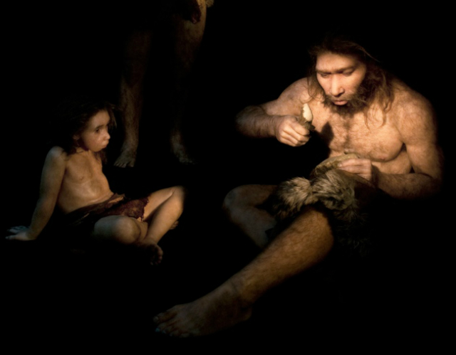 Вклад неандертальца в геном современного человека больше, чем предполагалось ранее